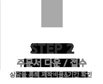step_ico_2